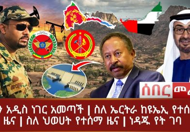 News about the TPLF